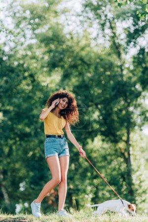 alegre mujer en verano traje hablando en el teléfono celular mientras paseando con jack russell terrier perro en parque