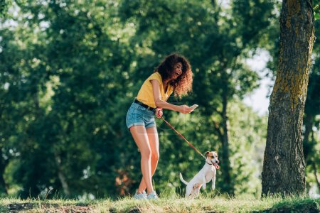 laughing woman in summer outfit taking photo of jack russell terrier dog while strolling in park
