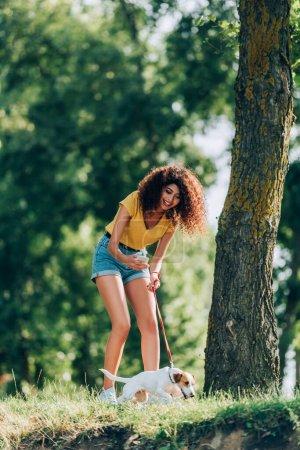 Photo pour Femme bouclée en tenue d'été prendre des photos de Jack Russell terrier chien tout en marchant dans le parc - image libre de droit