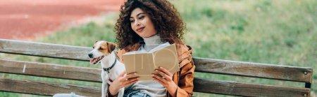 Photo pour Recadrage horizontal de femme bouclée tenant livre tout en étant assis sur le banc avec Jack Russell Terrier chien - image libre de droit