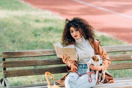 Photo pour Femme élégante en automne tenue livre de lecture tout en étant assis sur le banc avec Jack Russell terrier chien - image libre de droit