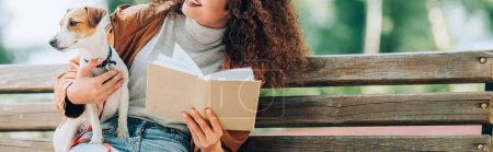 cropped view of curly woman sitting on bench with jack russell terrier dog and book, horizontal orientation
