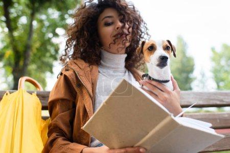 Photo pour Vue à faible angle de la femme bouclée tenant Jack Russell Terrier chien tout en lisant le livre dans le parc - image libre de droit
