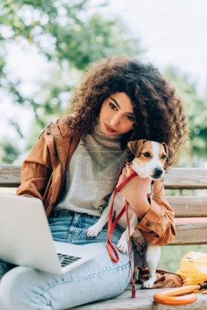 Photo pour Freelance bouclé à l'aide d'un ordinateur portable tout en étant assis sur le banc dans le parc avec Jack Russell Terrier chien - image libre de droit