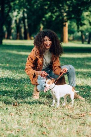 Photo pour Concentration sélective de la femme en imperméable tenant laisse près de Jack Russell Terrier dans le parc - image libre de droit