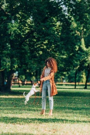 Selective focus of young woman playing with jumping jack russell terrier on leash in park