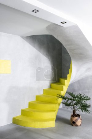 Photo for Modern interior with concrete walls and yellow stairs near plant - Royalty Free Image