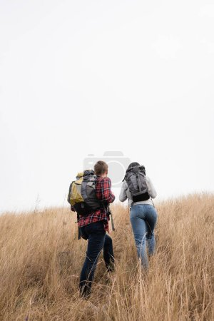 Photo for Back view of travelers with backpacks hiking on grassy hill with sky at background - Royalty Free Image