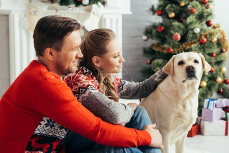 Photo pour Heureux couple câlins labrador près arbre de Noël à la maison - image libre de droit
