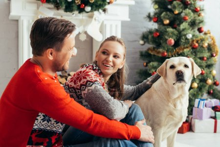 happy couple cuddling dog near christmas tree at home