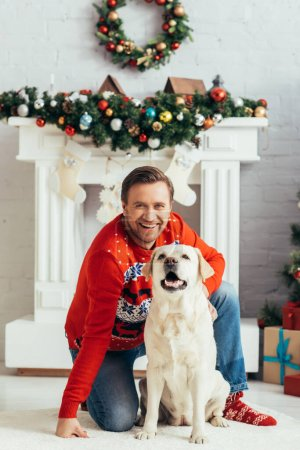 joyful man in sweater cuddling labrador in decorated apartment, christmas concept