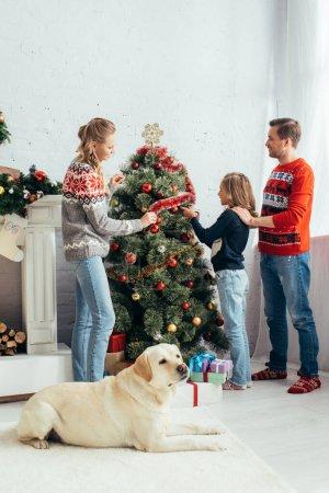 labrador lying near happy family decorating christmas tree in living room