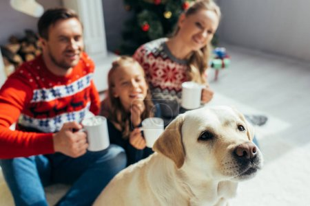 Labrador near near joyful family in sweaters with cups in hands on blurred background