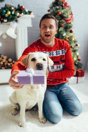 Photo pour Joyeux homme en pull tenant présent près du labrador à Noël - image libre de droit