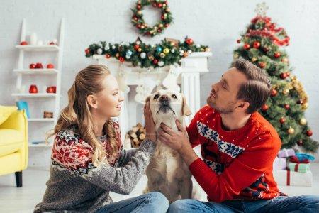 Photo pour Heureux couple en chandails câlins labrador dans appartement décoré sur Noël - image libre de droit