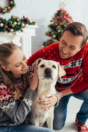 Photo pour Couple joyeux en chandails tricotés câlins labrador dans appartement décoré sur Noël - image libre de droit
