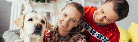 Photo pour Homme heureux en pull regardant femme près labrador dans appartement décoré sur Noël, bannière - image libre de droit