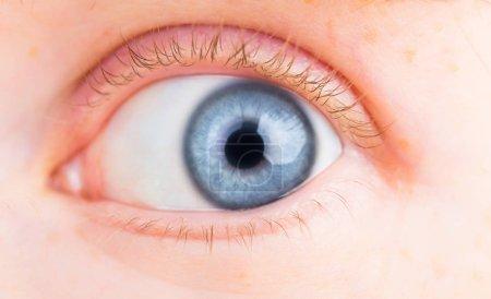 Photo for Macro image of human eye - Royalty Free Image