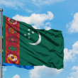 Congo and Turkmenistan flag waving in the wind aga...