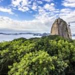 Views to Sugar Loaf mountain and Rio do Janeiro ci...