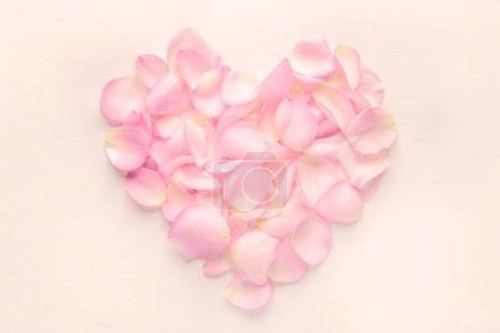 Photo pour Coeur de pétales de fleurs roses sur fond rose, pastel - image libre de droit