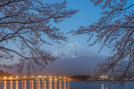 Night view of Sakura cherry blossom and Mt. Fuji at Kawaguchiko lake , Japan  in spring season