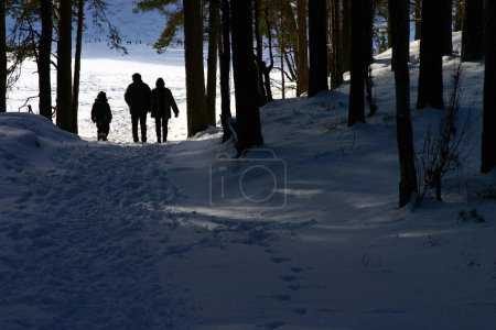 Photo for Family of three in stroll through the forest - Royalty Free Image