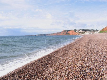 Photo for Devon Coast with Rocky Beach - Royalty Free Image