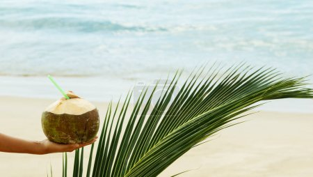 Photo for Female hand with a coconut and palm leaf - Royalty Free Image