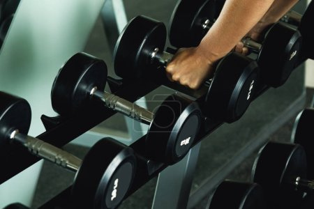 Photo for Row of dumbbells and female hands - Royalty Free Image