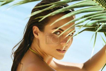 Photo pour Portrait d'une femme belle avec les ombres des feuilles de palmier sur son visage - image libre de droit