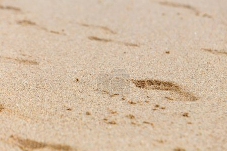 Photo for Footprints of bare feet on wet beach sand. - Royalty Free Image