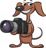 Vector illustration of Dog photographer Easy-edit layered vector EPS10 file scalable to any size without quality loss High resolution raster JPG file is included