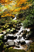 beautiful waterfall on natural background