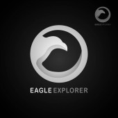 This logo has a picture of an eagle This logo is in 3D This logo is good to use as a company logo or can also be used in the travel business but can also be used in application logos such as browser app and various other creative businesses