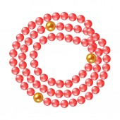 Necklace of coral pearls on a white background Vector illustration