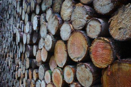Photo pour Billes de bois empilées en perspective - image libre de droit