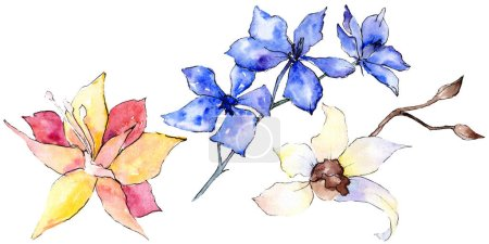 Purple, yellow and white orchid flowers isolated on white. Watercolor background illustration. Hand drawn aquarelle flowers.
