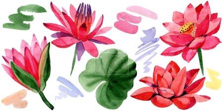 Photo pour Fleurs de lotus rouge. Élément d'illustration isolé lotus fleurs. Illustration de fond aquarelle. - image libre de droit