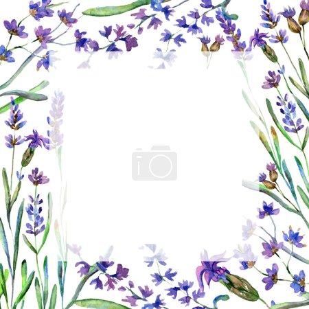 Photo pour Fleurs de lavande pourpre. Fleurs sauvages de printemps. Illustration de fond aquarelle. Cadre bordure carré . - image libre de droit