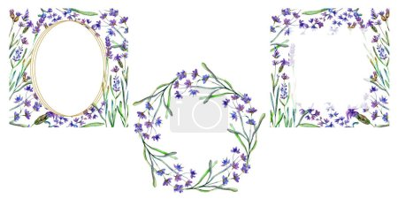 Purple lavender flowers. Wild spring leaves. Watercolor backgrounds set. Square, round and wreath frames set.