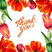 """Постер, картина, фотообои """"Удивительный красный тюльпан цветы с зелеными листьями. Спасибо, Каллиграфические монограммы рукописного ввода. Рука нарисованные цветы. Акварель фон иллюстрации. Площадь кадра границы."""""""