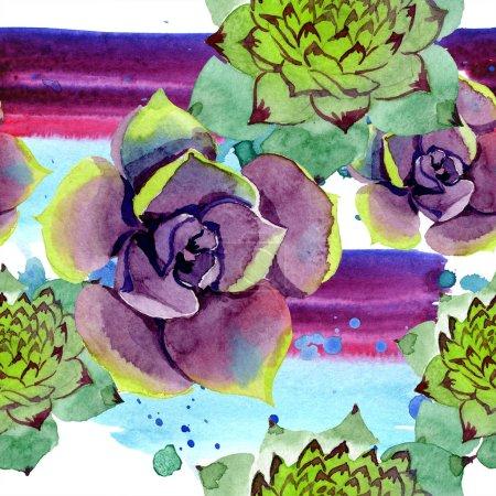 Photo pour Plantes succulentes incroyables. Illustration de fond aquarelle. Motif de fond transparente. Impression texture de tissu papier peint. - image libre de droit