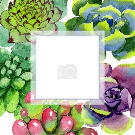 Photo for Amazing succulents. Watercolor background illustration. Frame square. Aquarelle hand drawing succulent plants. - Royalty Free Image
