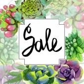 Amazing succulents. Sale handwriting monogram calligraphy. Watercolor background illustration. Frame border ornament square. Aquarelle hand drawing succulent plants.