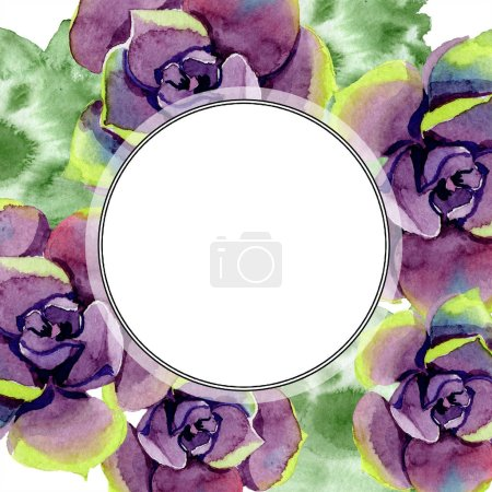 Photo for Amazing succulents. Watercolor background illustration. Frame border ornament round. Aquarelle hand drawing succulent plants. - Royalty Free Image