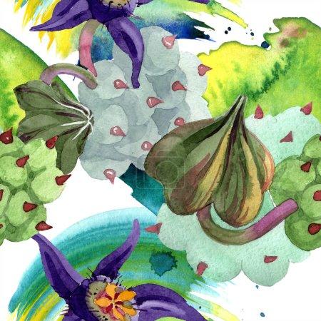 Photo pour Duvalia fleurs. Illustration de fond aquarelle. Aquarelle plantes succulentes dessinées à la main. Modèle de fond sans couture. Texture d'impression papier peint tissu . - image libre de droit