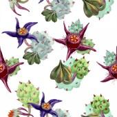 Duvalia flowers. Watercolor background illustration. Aquarelle hand drawn succulent plants. Seamless background pattern. Fabric wallpaper print texture.