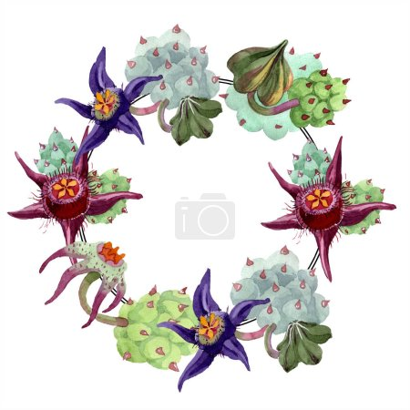 Duvalia flowers. Watercolor background illustration. Frame border ornament wreath. Aquarelle hand drawing succulent plants.