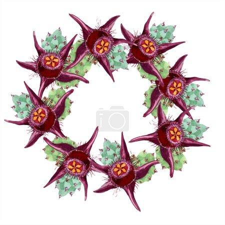 Duvalia flowers. Watercolor background illustration. Frame border ornament wreath. Aquarelle hand drawing succulent plants.